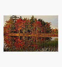 Reflection Island Photographic Print