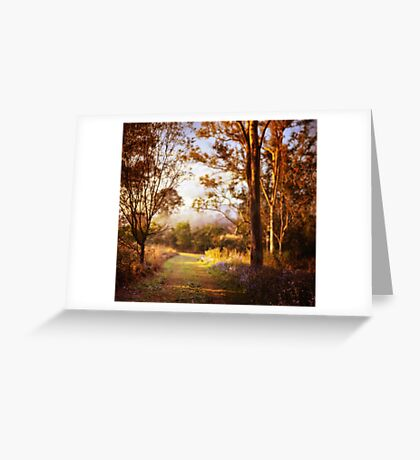Morning is wonderful. Its only drawback is that it comes at such an inconvenient time of day. Greeting Card
