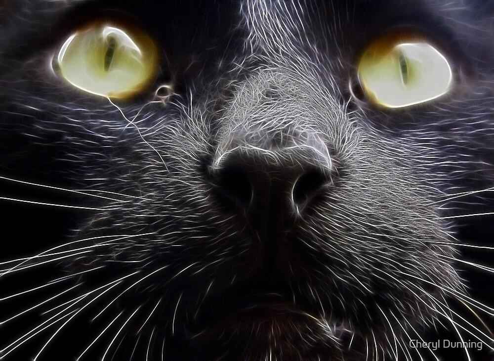Salem by Cheryl Dunning