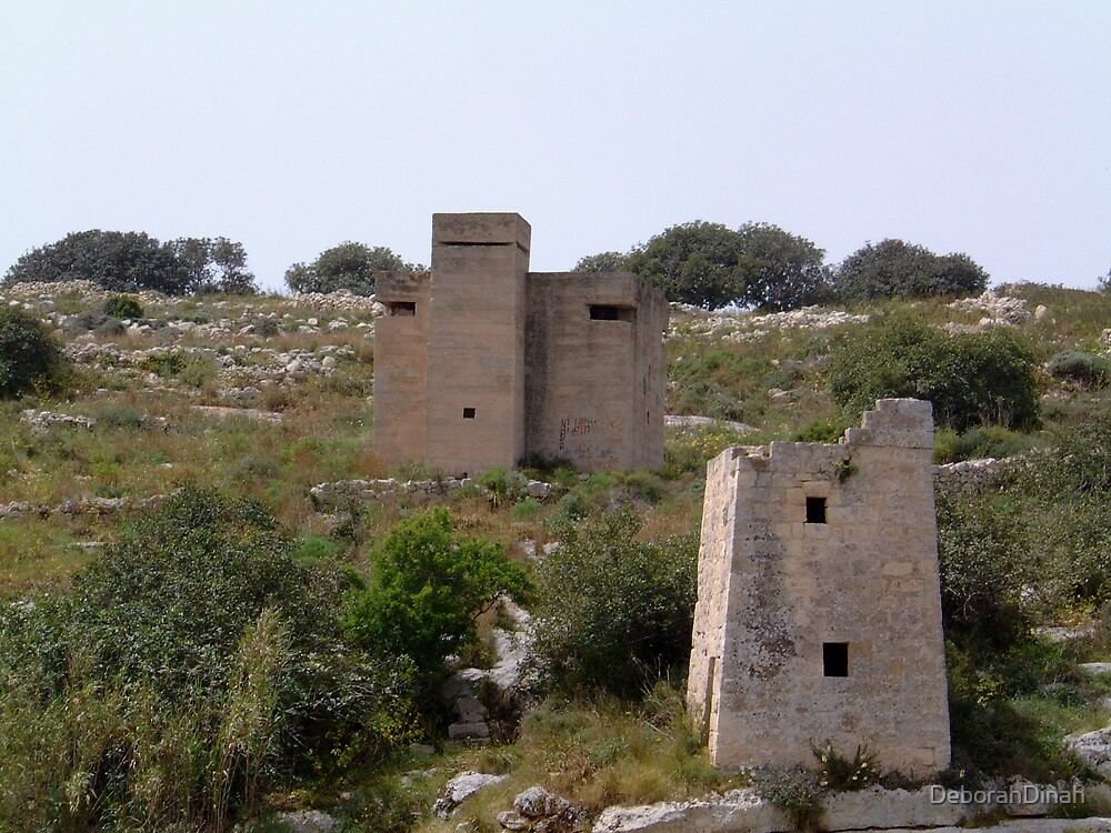 Maltese Country Landscape by DeborahDinah