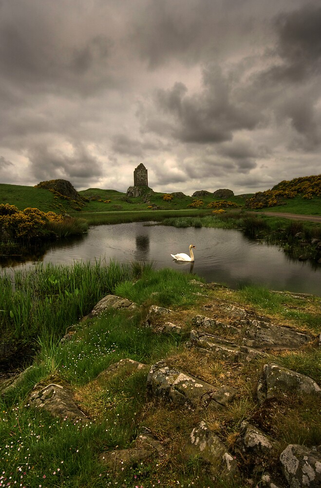 THE MILL POND by STEVE  BOOTE