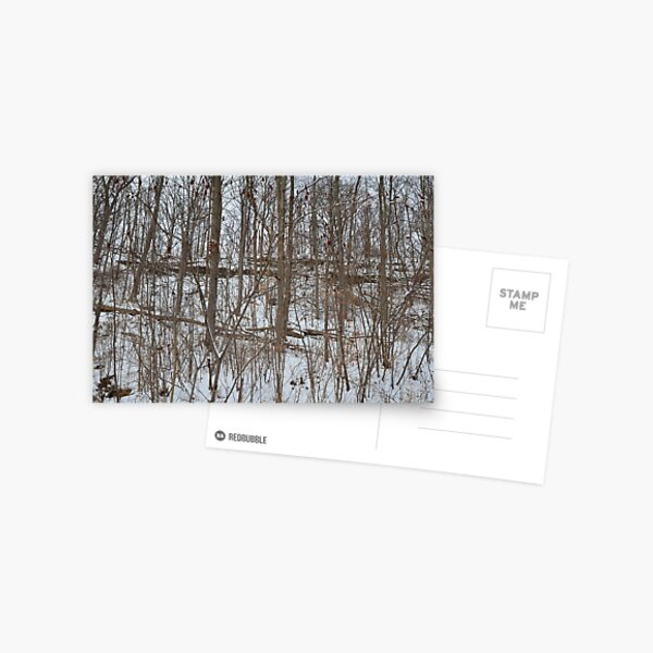Escarpment snow fall Postcard
