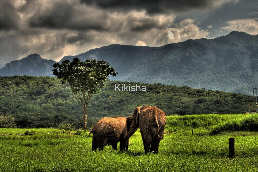 Elephant by Kikisha