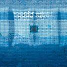 blue by Andrew Bradsworth