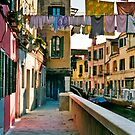 Washing in Venice 2 by Cvail73