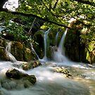 Plitvice Waterfalls III by Luca Mancinelli
