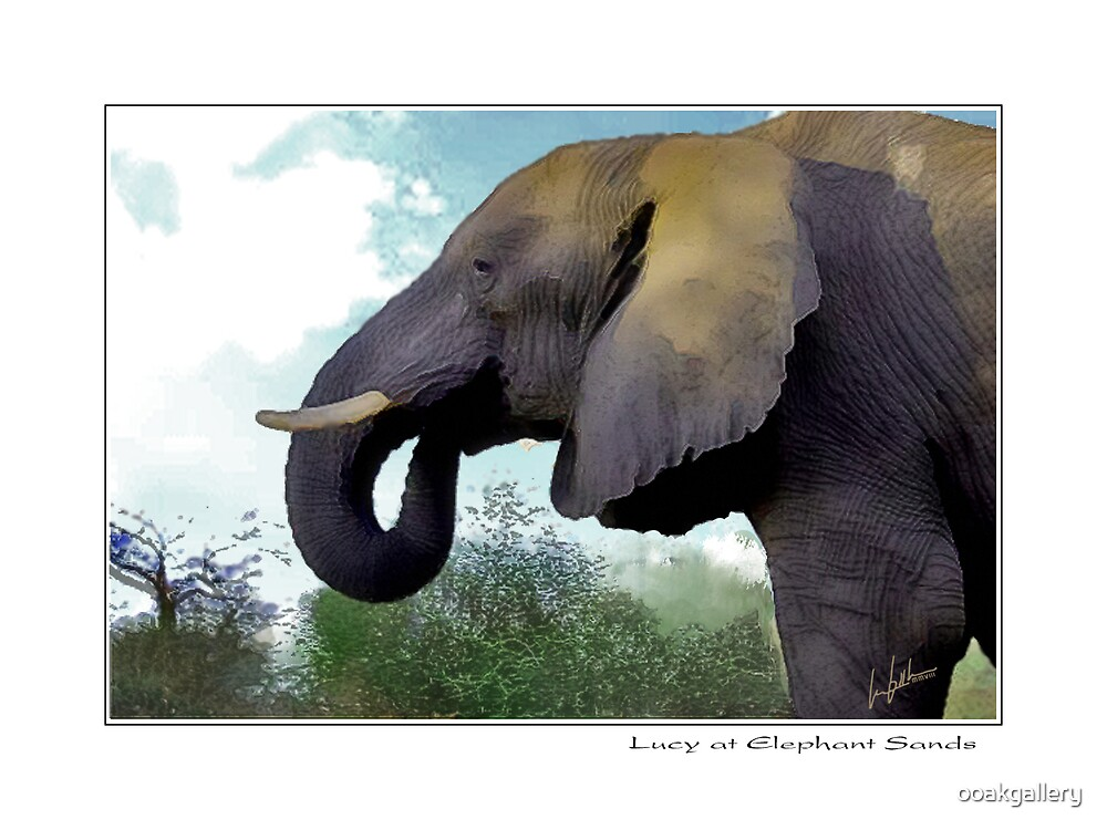 Lucy at the Elephant Sands by ooakgallery