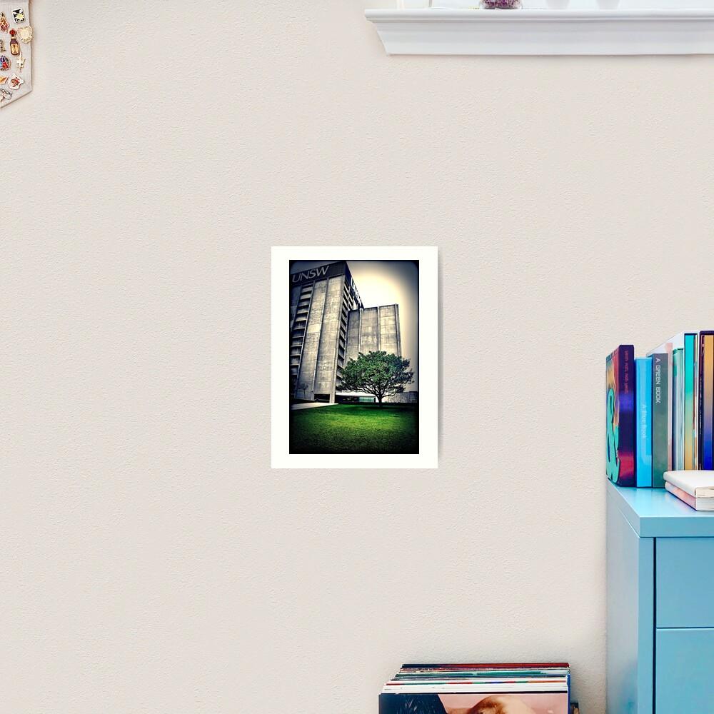 Library. UNSW Art Print
