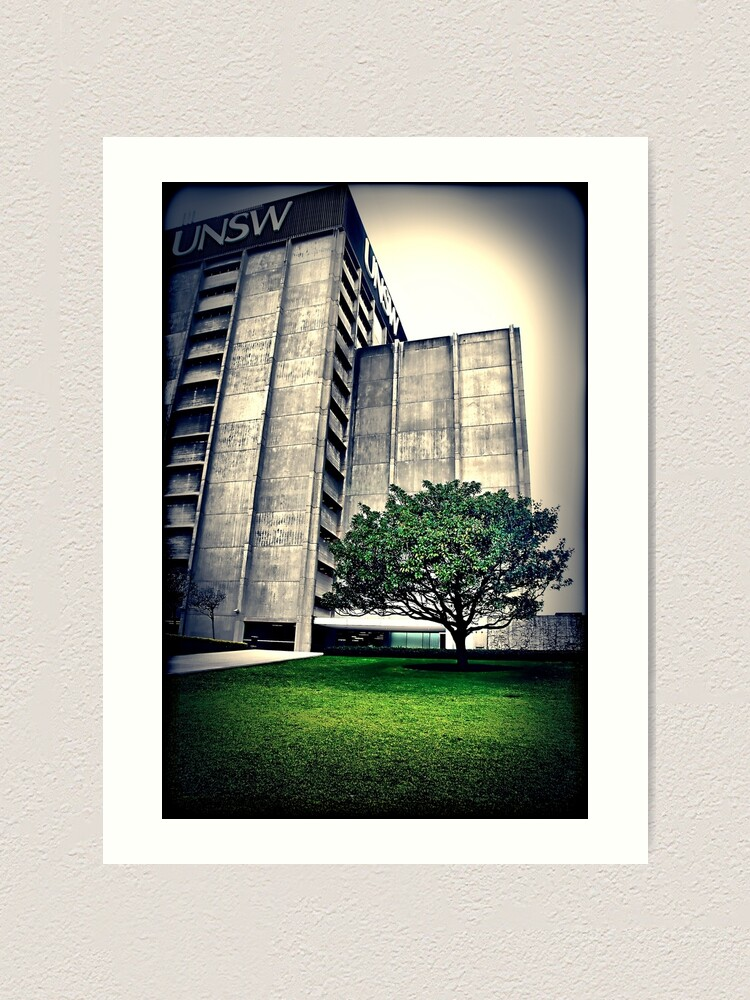 Alternate view of Library. UNSW Art Print