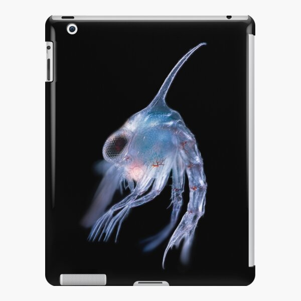 Crustacean planktonic larva iPad Snap Case