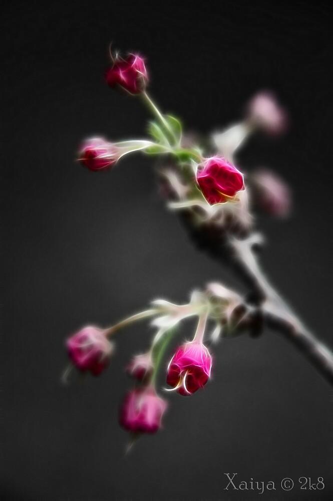 pokey pink by xaiya