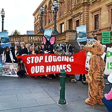 Stop Logging Our Homes by retepk