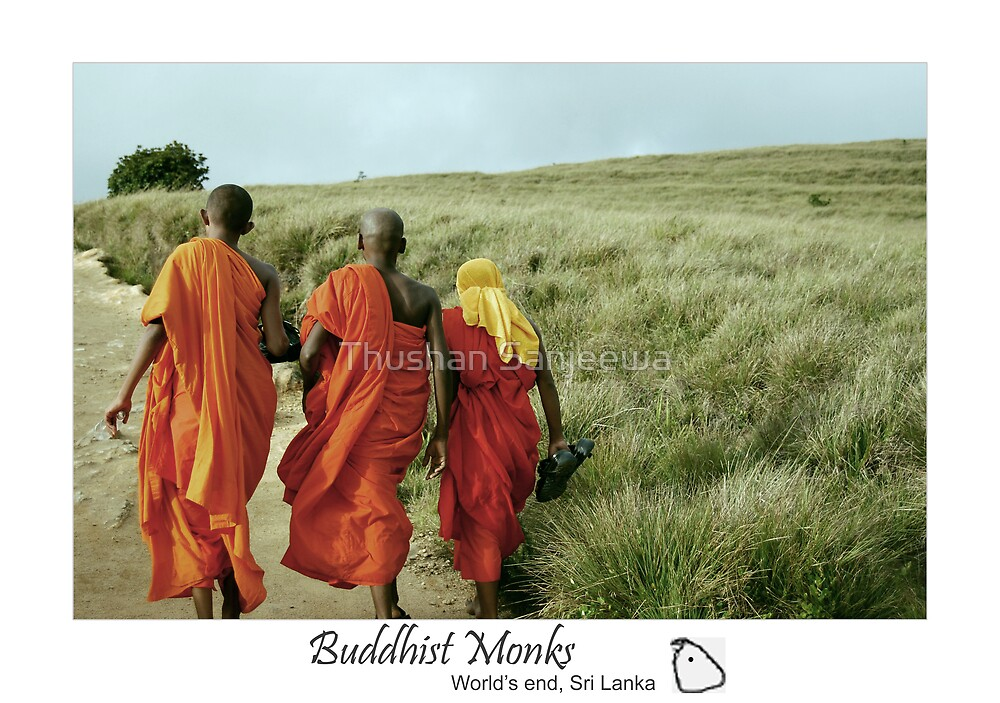 Buddhist monks: searching nirvana by Thushan Sanjeewa