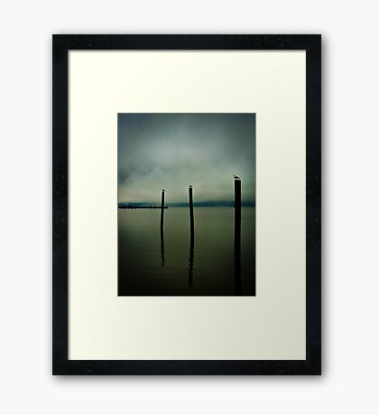 Three Seagulls - Peekskill Riverfront  Framed Print