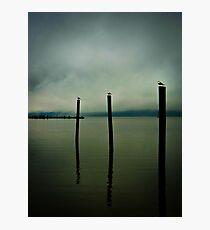 Three Seagulls - Peekskill Riverfront  Photographic Print
