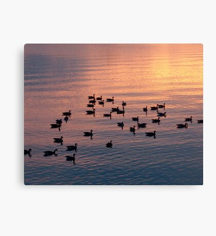 Down For The Night Canvas Print