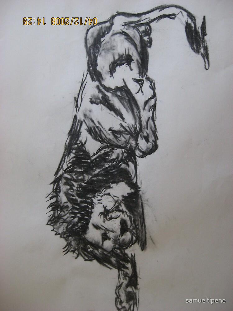 lion by samueltipene