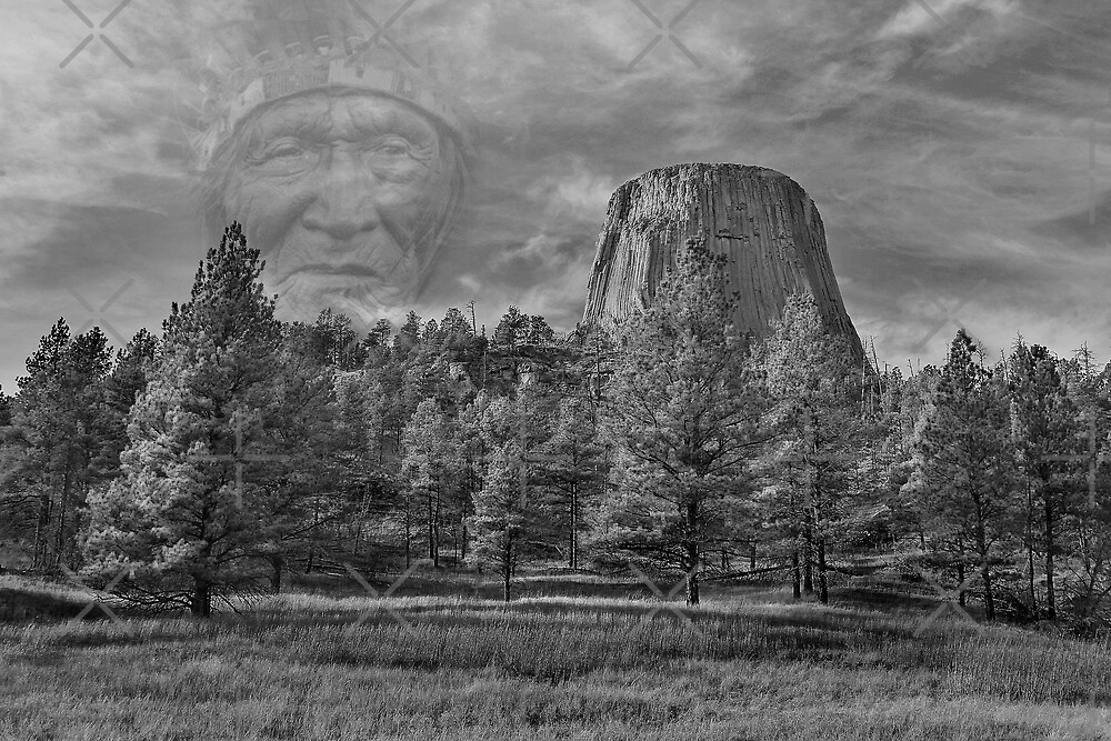 Watching over Sacred Ground by Mark Rogers