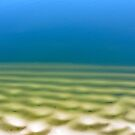 Mudflats, Deception Bay by Dean Bailey