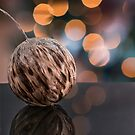 Feather Christmas Bauble by Sara Sadler
