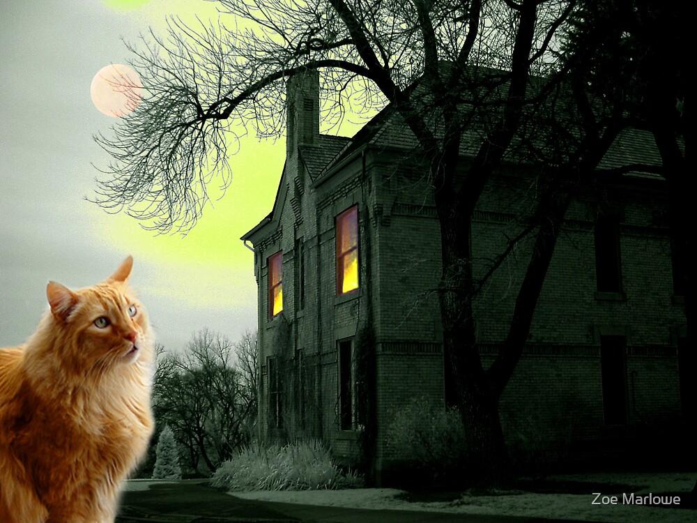 House On The Corner by Zoe Marlowe
