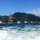 Tall Ships 11 (in front of Portofino) by Monica Di Carlo