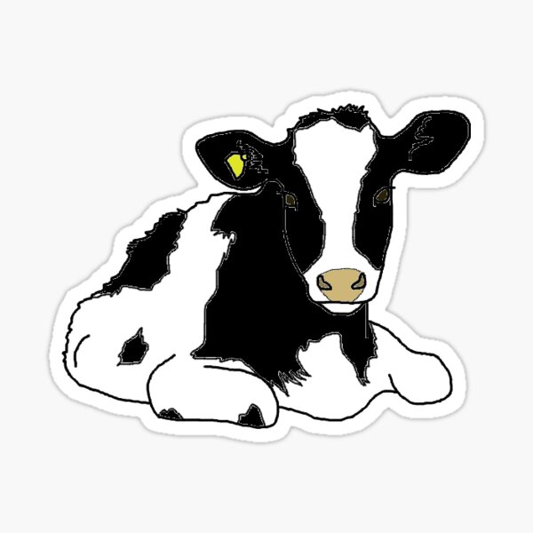 Holstein Heifer Sticker