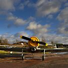 Acrobatic II by Lea Valley Photographic