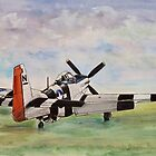P51D Mustang by Woodie