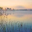 « One Morning » par Päivi  Valkonen