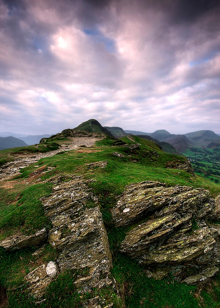 ALONG THE RIDGE by STEVE  BOOTE
