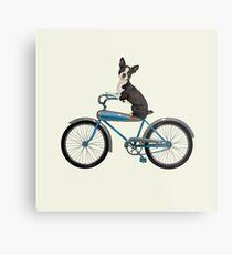 Dog on a Bike Metal Print