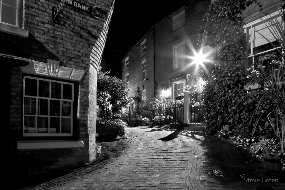 The Alley by Steve Green
