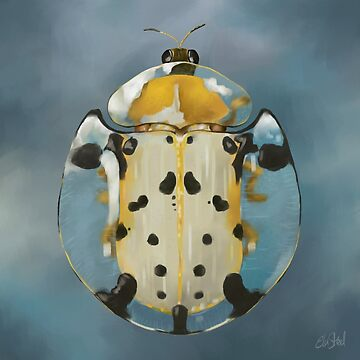 Tortoise  Beetle - Bug Art by Ela Steel by elasteel