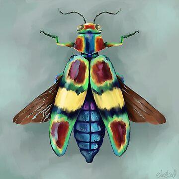 Colourful Beetle by Ela Steel by elasteel