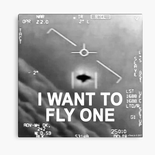 I Want To Fly One Canvas Print