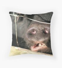 Pig Face Throw Pillow