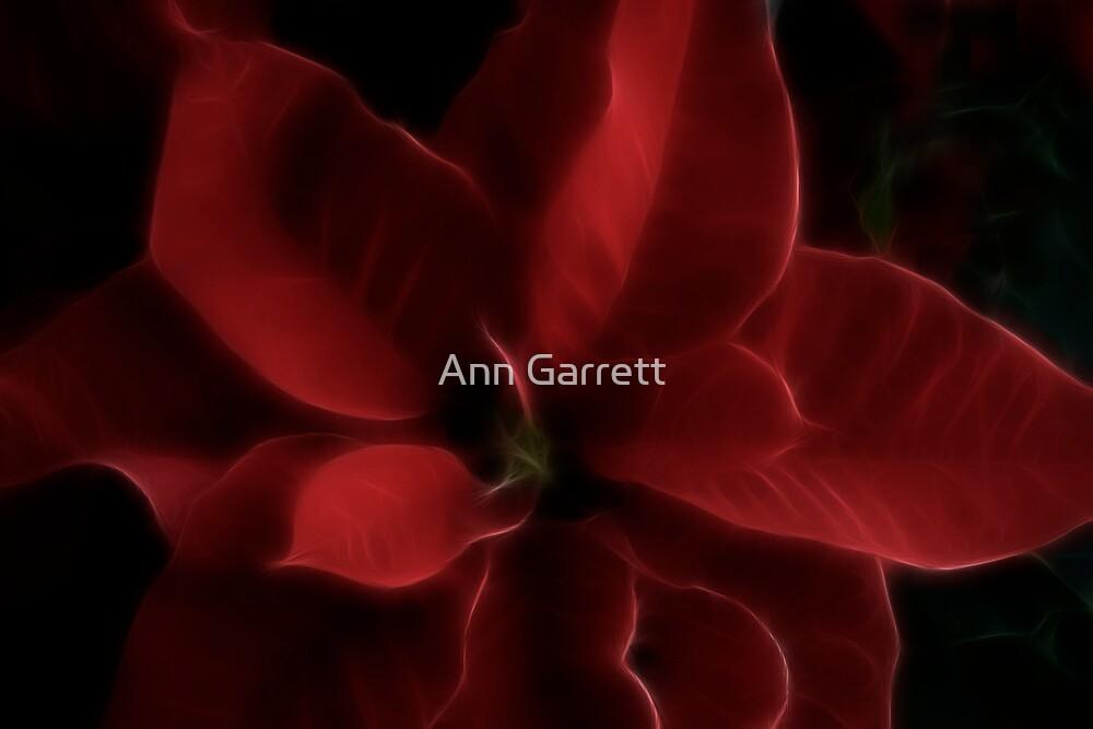 Fractalius Poinsettia by Ann Garrett