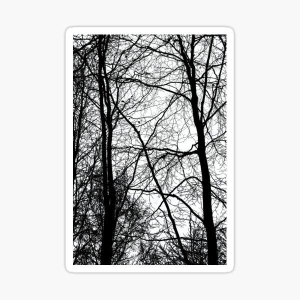 Tree Silhouette Series 3 Sticker