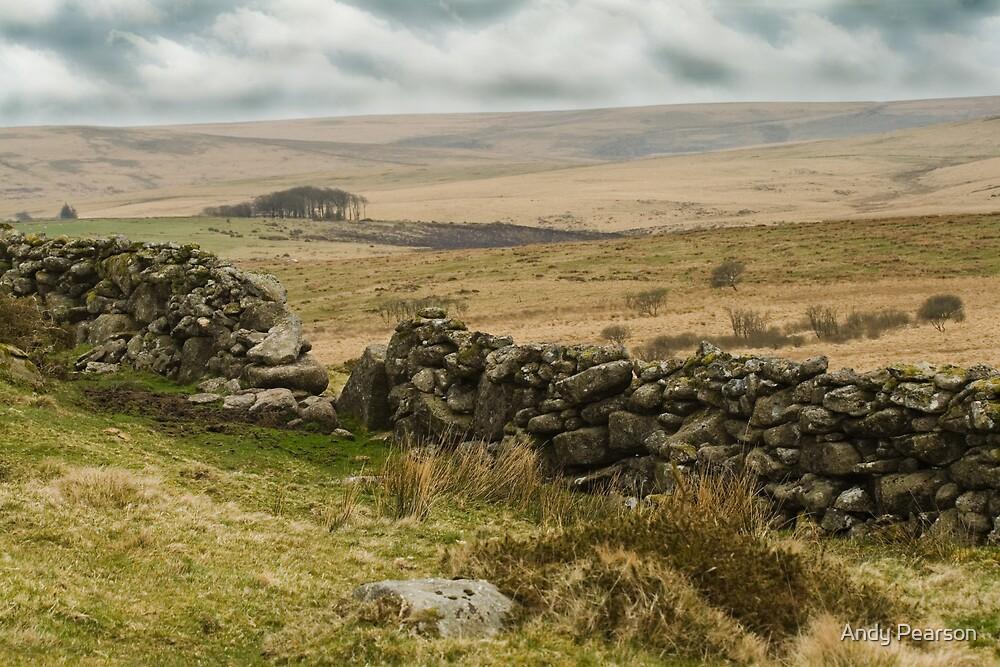 Dartmoor Vista by Andy Pearson