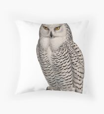 Vintage Natural History Illustration Snowy Owl Throw Pillow