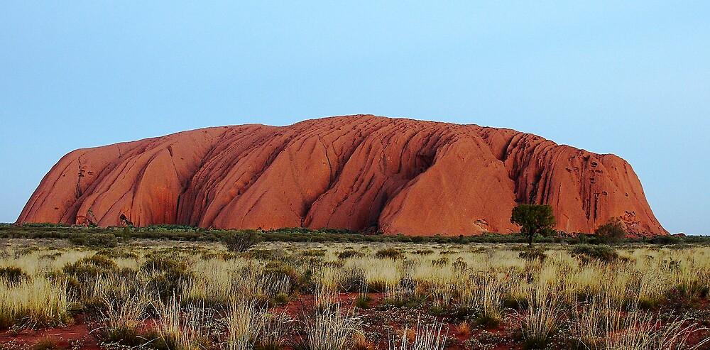 Uluru at dawn by Dóra  Varga Lencsés