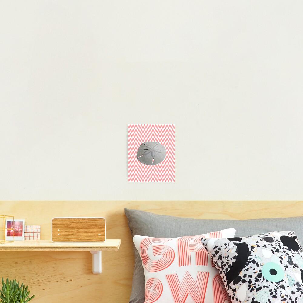 Sand Dollar Pink Waves Photographic Print