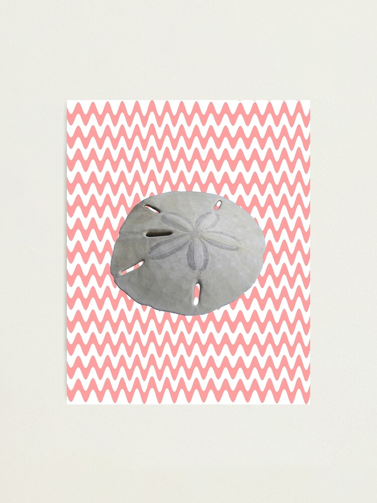 Alternate view of Sand Dollar Pink Waves Photographic Print