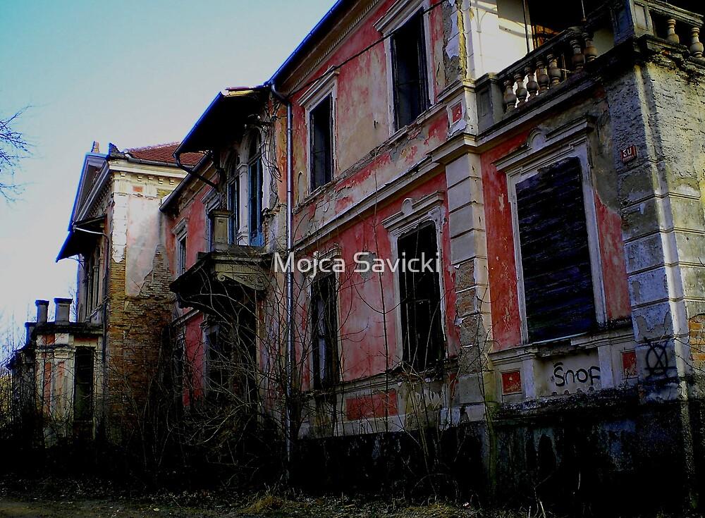 Vila Ružička by Mojca Savicki
