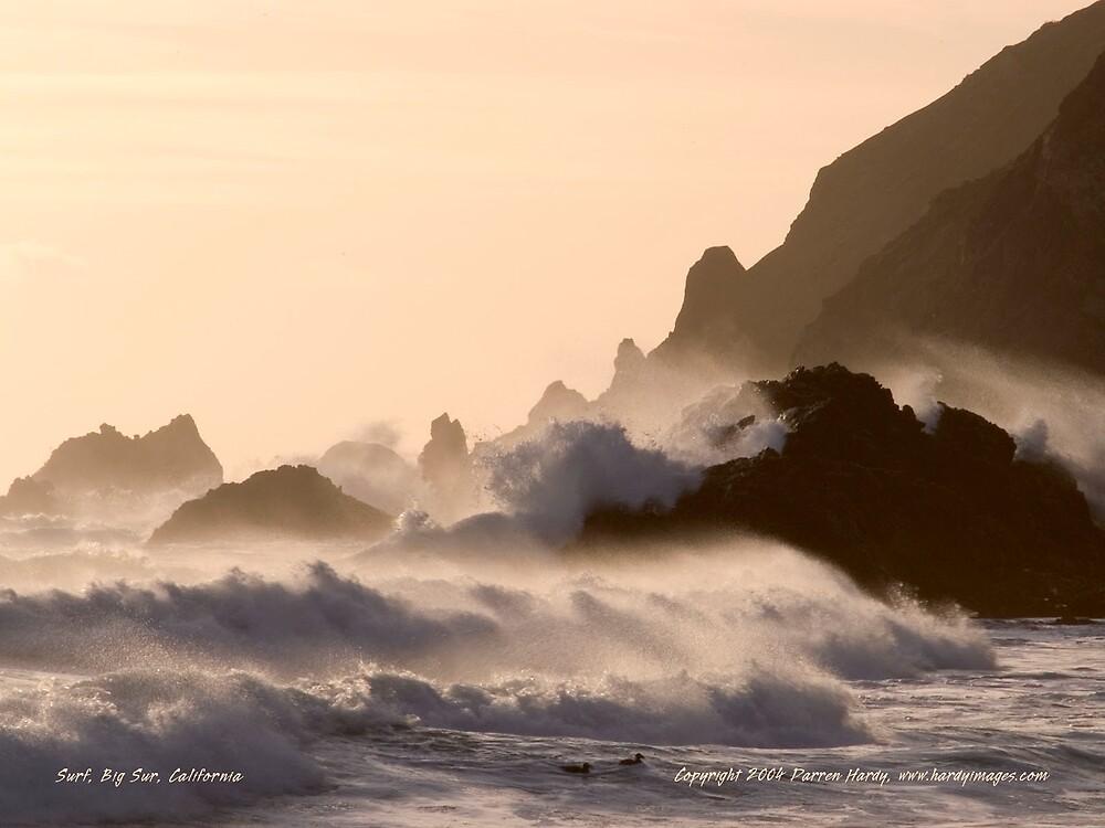 Surf by Darren Hardy