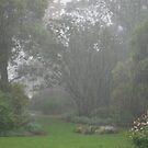 Rain on my garden by Julie Sherlock