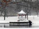 Frozen Pond at St Marie Du Lac by FrankieCat