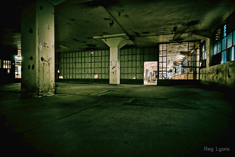 Meatworks Abandonment, New Zealand by Reg  Lyons