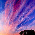 Avonlea sunset  Western Australia by salsbells69